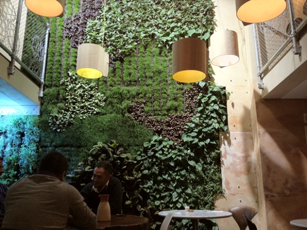 plant wall interior at karpo
