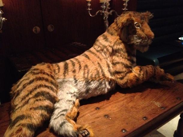 stuffed tiger at carom