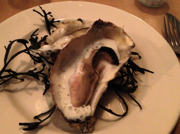 buttermilk oysters at season