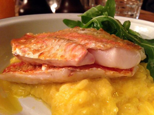 red mullet saffron risotto at pig and butcher islington