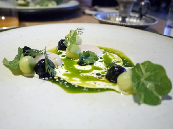 scallops, cucumber and dill ash at story
