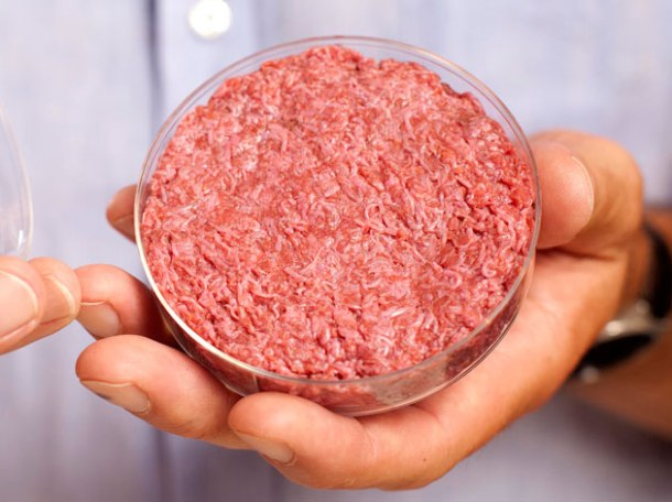 cultured beef artificial meat held by professor post of the university of maastricht