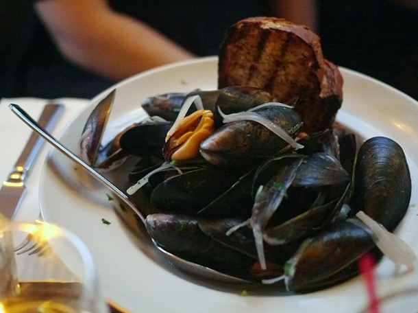 mussels at the ape and bird