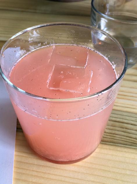 rhubarb soda at rawduck