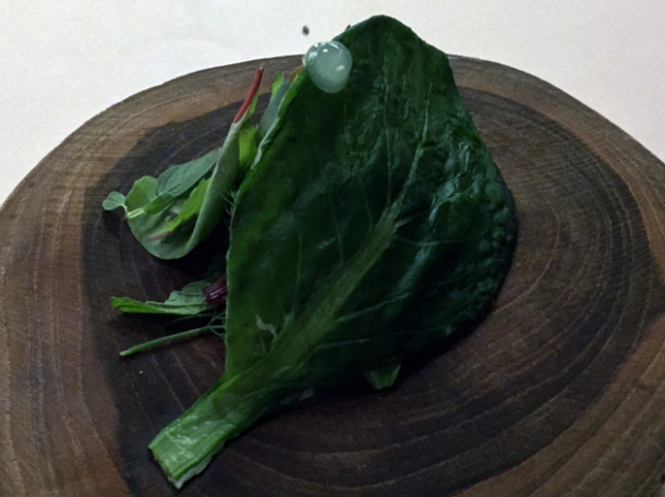 tuna with bitter herbs and mint wrapped in leaf at metamorfosi rome