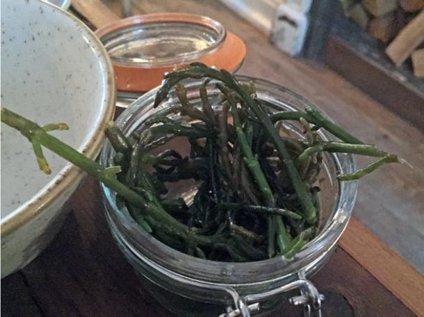 pickled samphire at rök