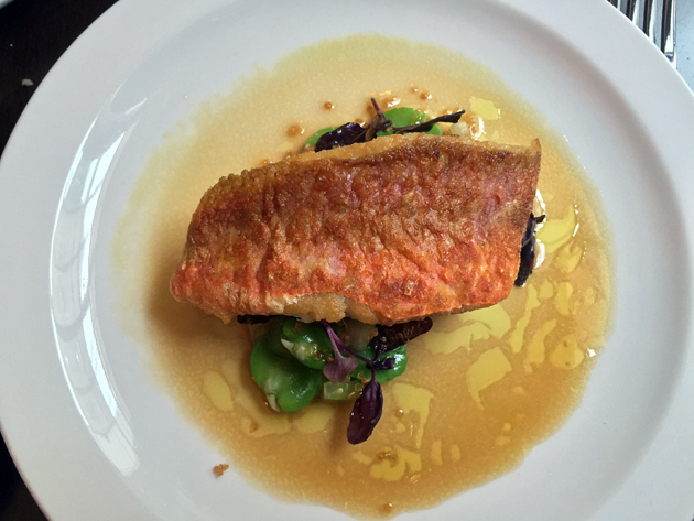 red mullet at the newman arms