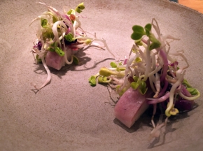 Nobelhart and Schmutzig review – cloaked contemporary cuisine close to CheckpointCharlie