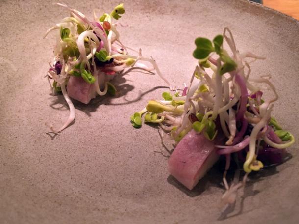 eel with radish at nobelhart and schmutzig