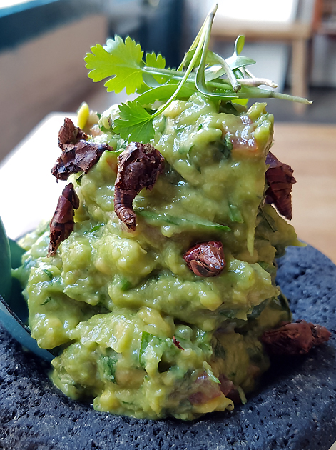 grasshopper guacamole at santo remedio