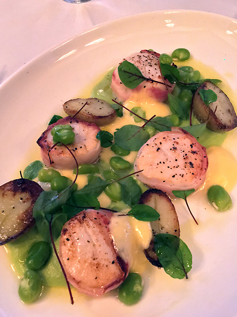 scallops pancetta at cafe monico