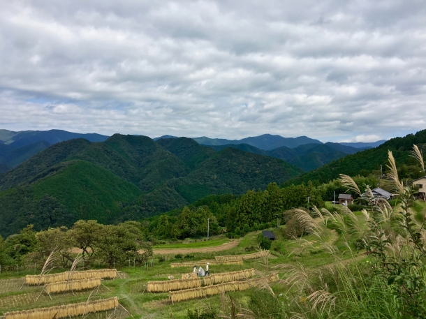 takahara hilltop village kumano kodo japan hiking