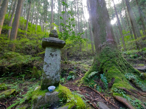 kumano kodo japan hiking forest shrine