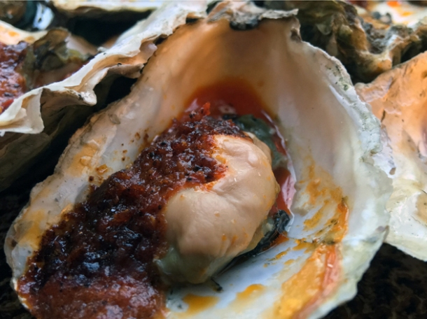link oysters at plaquemine lock