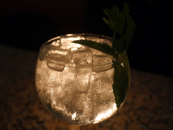 gin at temper city