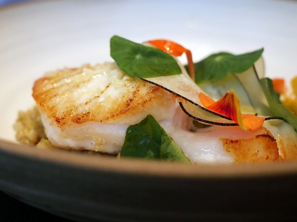 skrei cod with toasted buckwheat and mushrooms at hide ground