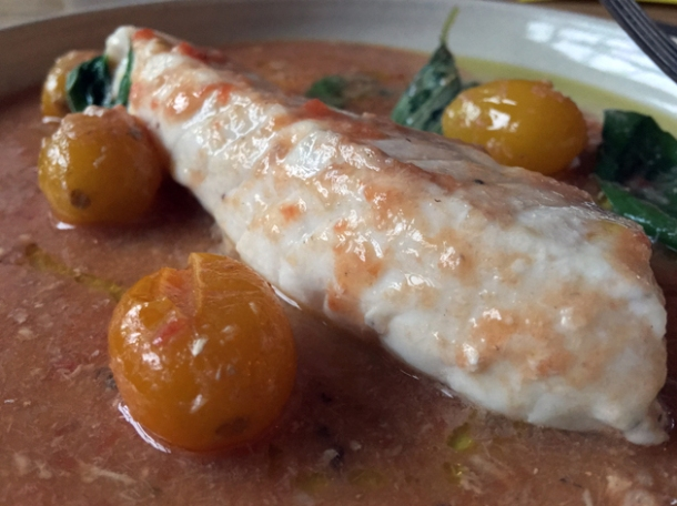 gurnard at bright