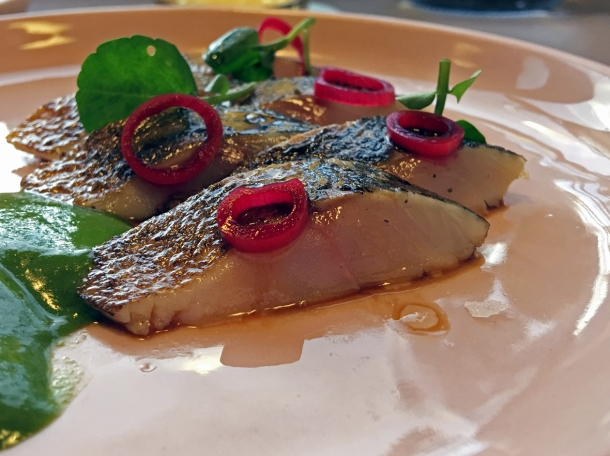 flamed mackerel at two lights