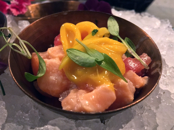 illustrative photo of the salmon ceviche at Madera Treehouse
