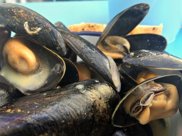 illustrative photo of the mussels at Mackerel Sky