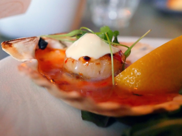 illustrative image of the scallops at Artists Residence Penzance