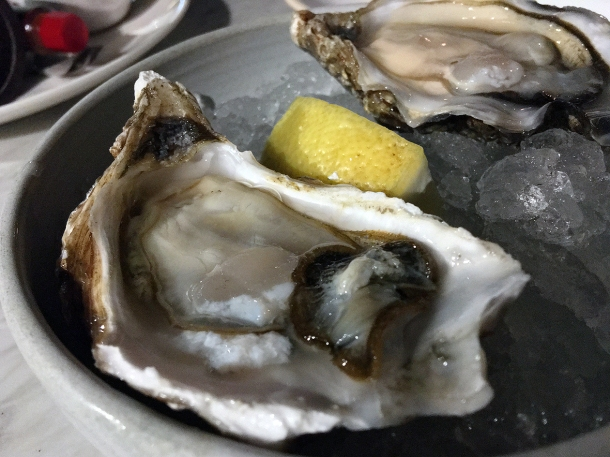 illustrative photo of the oysters at Darby's